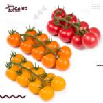طماطم-شيري-جولدن-ميكس-٢٠٠-جرام